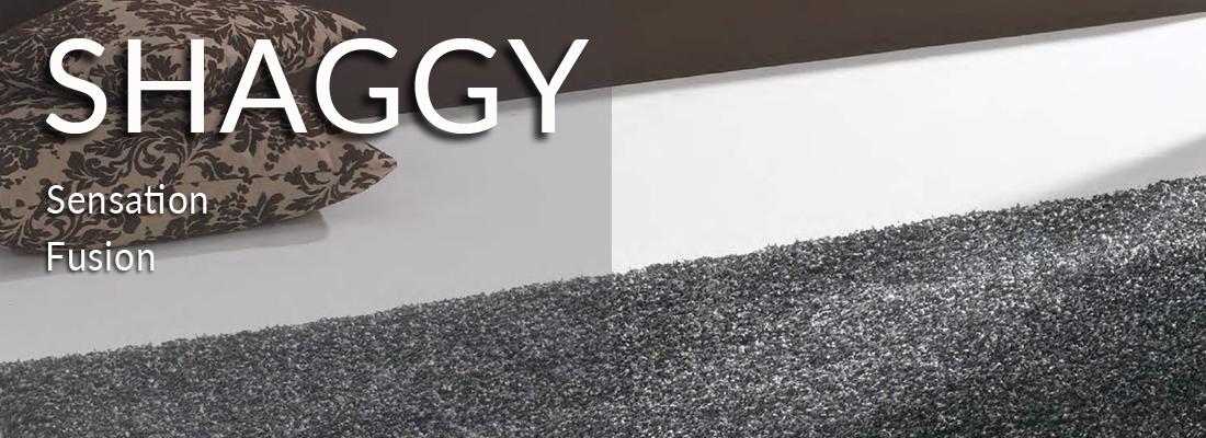 shaggy1